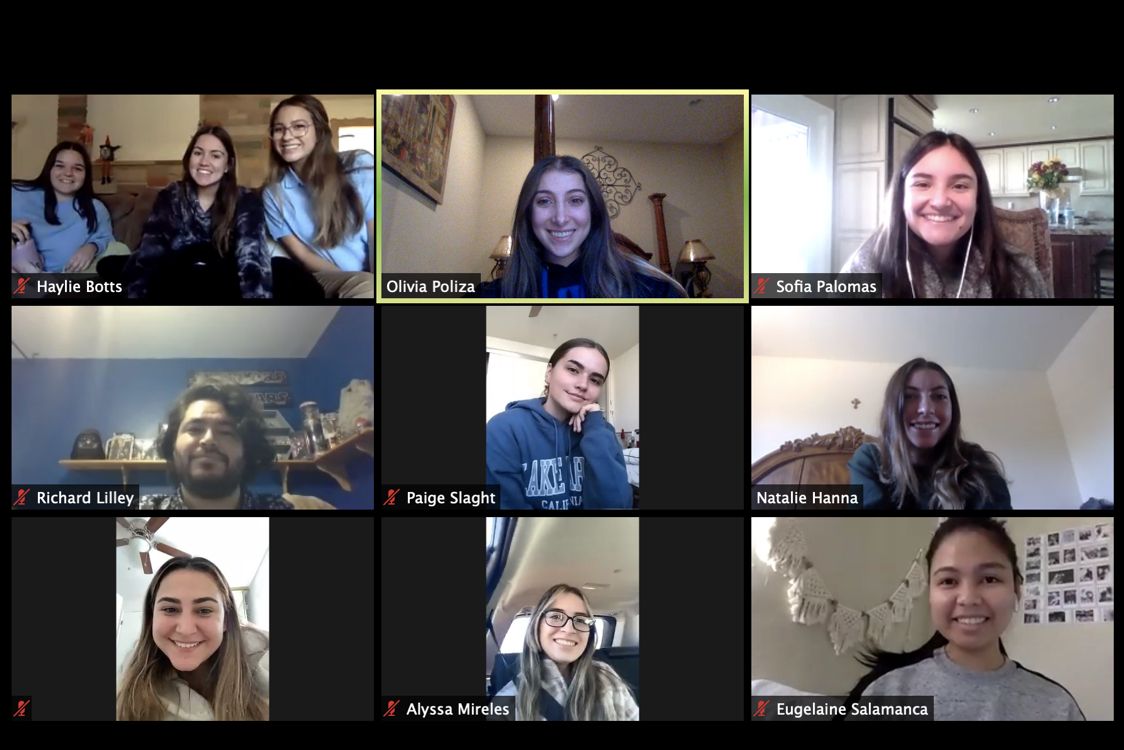 Undergraduate Students in a Zoom Call